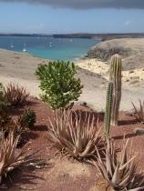 Wüstenartige Landschaft in Lanzarote ...